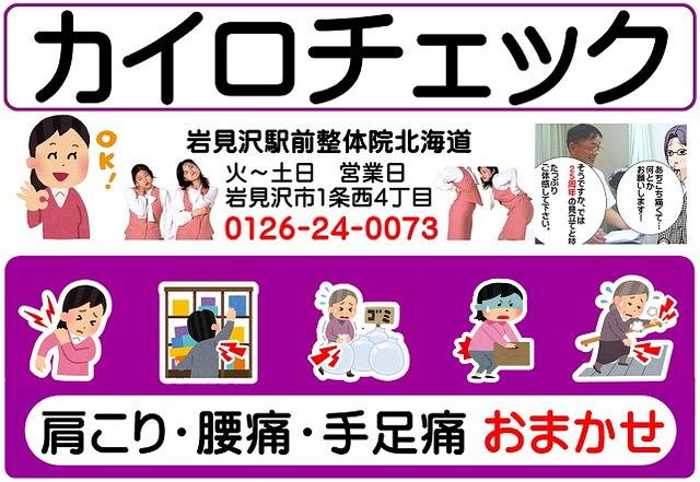 カイロチェック【公式サイト】
